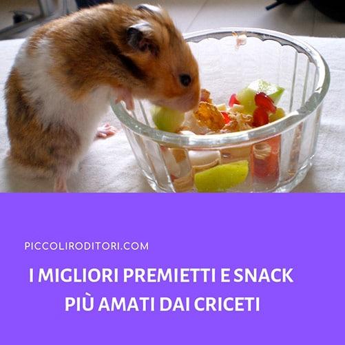 I-Migliori-Premietti-e-Snack-più-Amati-dai-Criceti