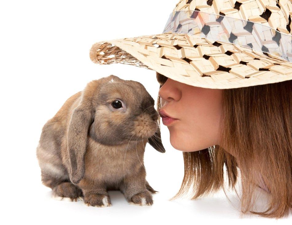 Coniglio nano  con bambina
